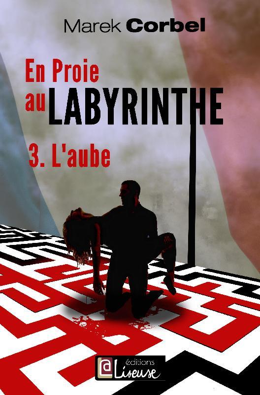 """Résultat de recherche d'images pour """"couverture en proie au labyrinthe corbel"""""""
